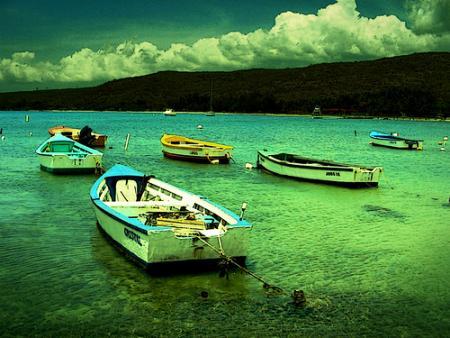 puerto-rico24.jpg