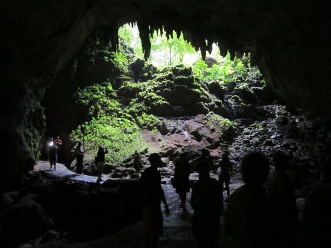 cueva-rio-camuy.jpg